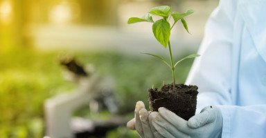 دراسة تخصص الهندسة الزراعية ومستقبله الوظيفي