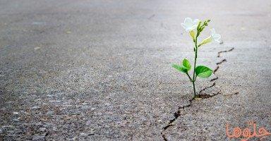 طرق التخلص من الإحباط والسلبية