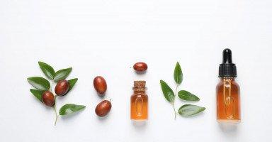 فوائد زيت الجوجوبا للشعر والبشرة واستخدام الجوجوبا