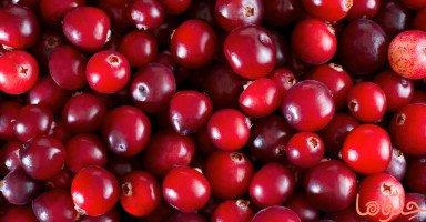 فوائد التوت البري Cranberries وأهم عناصره الغذائية