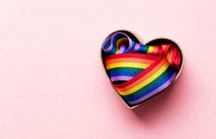 المثلية الجنسية والميول الجنسية المختلفة