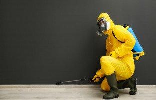 أعراض التسمم بالمبيد الحشري المنزلي والبدائل الطبيعية