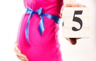 كيف أزيد وزن الجنين في الشهر الخامس؟ (شكل الجنين في الشهر الخامس من الحمل)