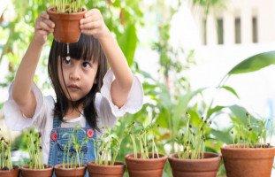 ما هو التعلم النشط وما هي استراتيجياته وعناصره
