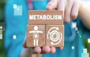معنى التمثيل الغذائي ومشاكل الأيض والاستقلاب