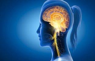 أعراض العصب الحائر أو العصب المبهم وطرق العلاج