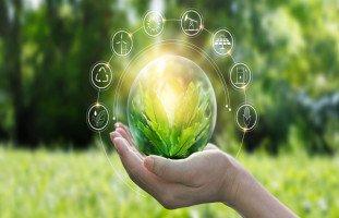 أهمية التنمية المستدامة وأهدافها