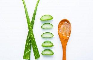 فوائد الألوفيرا للبشرة وطرق استخدام جل الألوفيرا