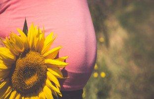 أضرار اللب على الحامل وفوائد البذور في فترة الحمل