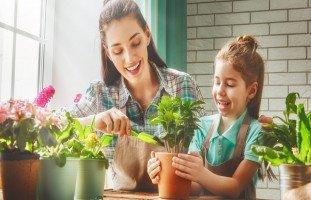 أفكار لتزيين الحديقة المنزلية واستغلال المساحات الضيقة