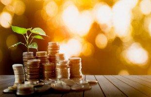 مشاريع بدون رأس مال وأفكار مشاريع صغيرة دون تكاليف