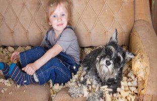 التخريب عند الأطفال والتعامل مع الأطفال المخربين