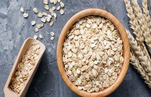 فوائد الشوفان والعناصر الغذائية في الشوفان
