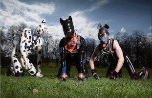 الجراء البشرية! عالم الكلاب البشرية والشذوذ الجنسي