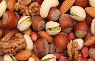 فوائد البندق Hazelnut والعناصر الغذائية في البندق