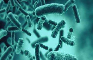 أنواع الإنفلونزا وطرق الوقاية والعلاج