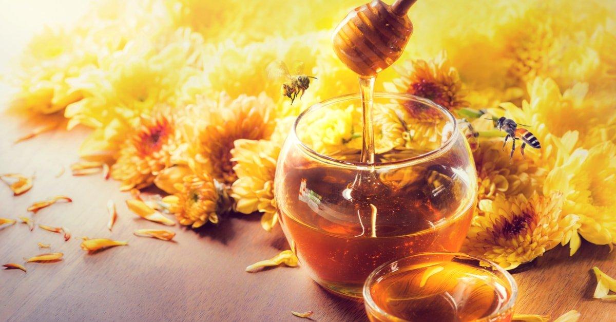 العسل في المنام وتفسير رؤية العسل بالتفصيل