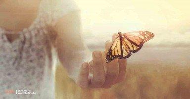 الحب وتقديم الأعذار يصنع المعجزات