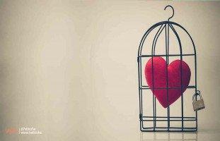 سر سعادتي أني اخترت بعقلي وأعطيت قلبي الفرصة للحب من جديد