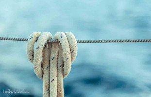 كلما ابتعدت عنه زاد عشقي وحبي وإدماني له
