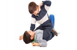 اختبار العدوانية عند الطفل: مقياس السلوك العدواني