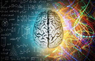 اختبار وظائف نصفي الدماغ وتأثيرهما على الشخصية